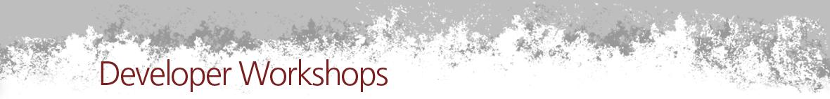 Community workshops for JBoss projects