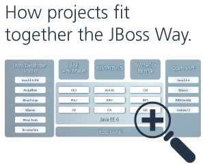 How project fit into the JBoss Way